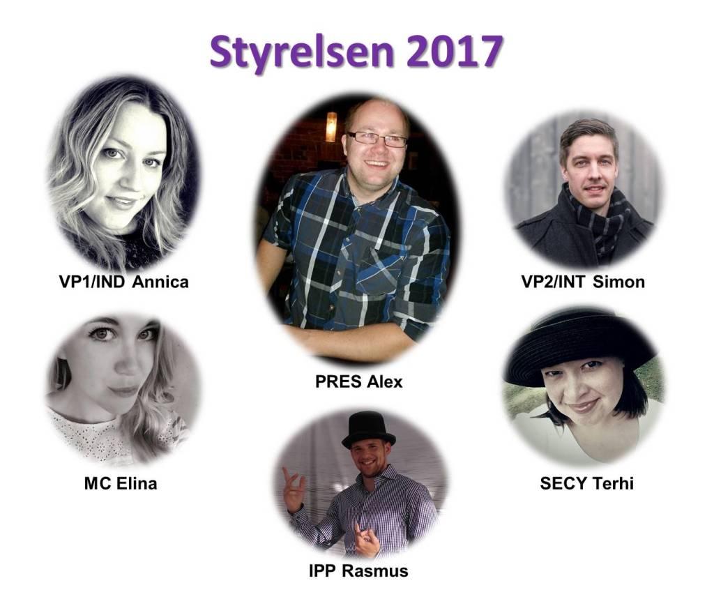 Styrelsen 2017, enskilda med namn